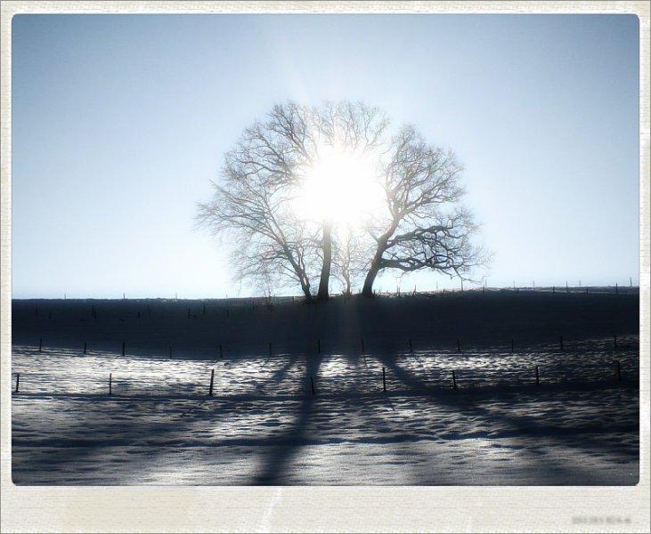 winter01-jpg