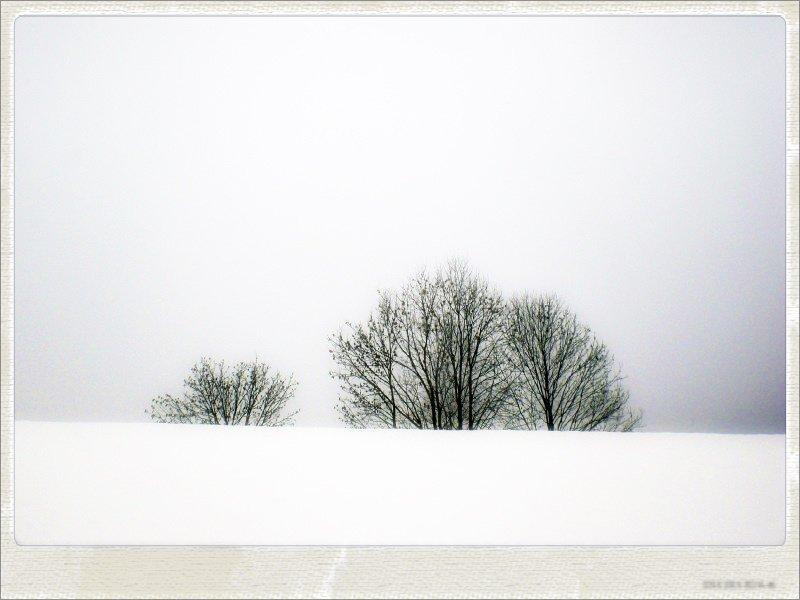winter07-jpg