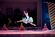 11_puppenfee-und-ballerinas-jpg