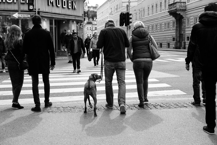 Menschen.Bilder.Zeitgenossen