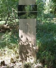 Wald will Kunst - Rochus Gratzfeld