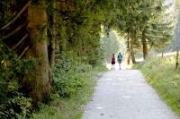 Gaisberg Rundwanderweg
