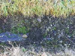 Baggergrabenwand
