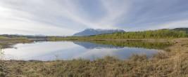 Ainringer-Moor-mit-Untersberg-Panorama