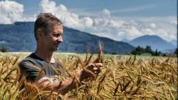 Bio-Landwirt Manfred Eisl inmitten seines Laufener Landweizen-Feldes. (Foto: ANL)