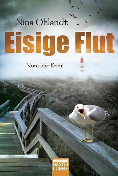 Nina Ohlandt: Eisige Flut