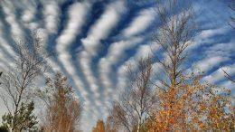 Wolken über dem Schönramer Filz   Foto: KTraintinger