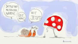 Jetzt Pilz