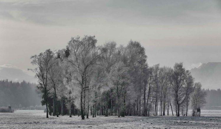 Winterlandschaft bei Holzhausen